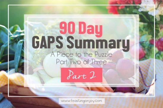90 Day GAPS Summary { A Piece to the Puzzle Part Two of Three } 1 | Feasting On Joy