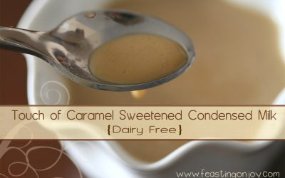 Touch of Caramel Sweetened Condensed Milk {Dairy Free}