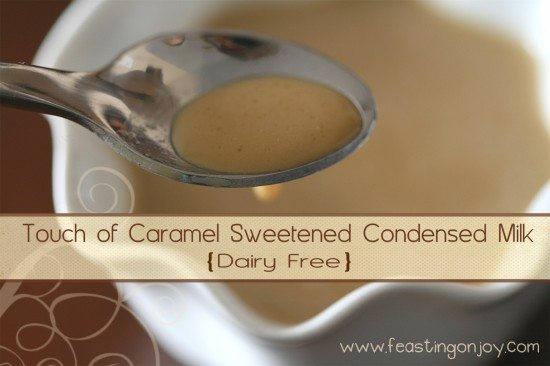 Touch of Caramel Sweetened Condensed Milk Dairy Free