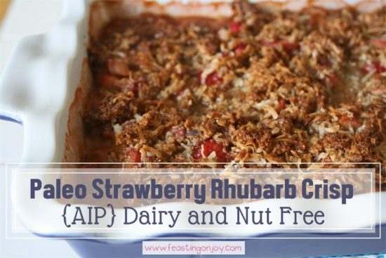 Paleo Strawberry Rhubarb Crisp {AIP} Dairy Free and Nut Free 1   Feasting On Joy