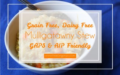 Grain Free, Dairy Free Mulligatawny Stew