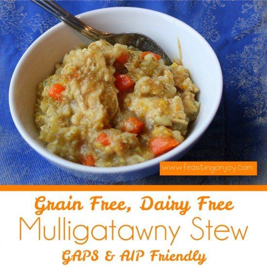 Grain Free, Dairy Free Mulligatawny Stew 2   Feasting On Joy