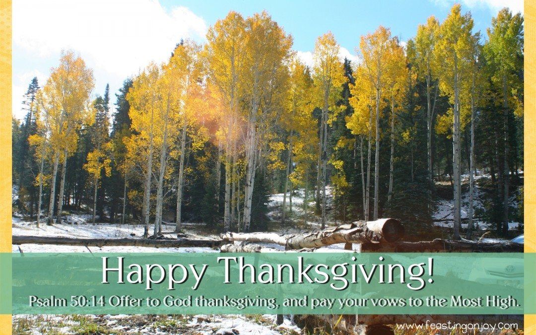 Happy Thanksgiving from Feasting On Joy!