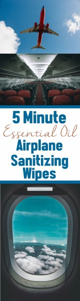 5 Minute Essential Oil Airplane Sanitizing Wipes LP   Feasting On Joy
