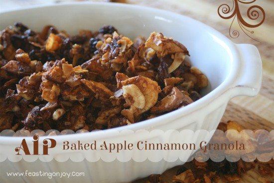 AIP Baked Apple Cinnamon Granola