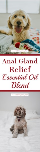 Anal Gland Relief Essential Oil Blend LP | Feasting On Joy