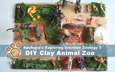 DIY Clay Animal Zoo {Apologia Zoology 3}