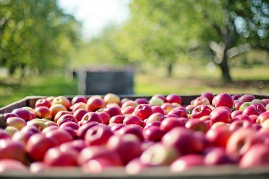 flat-apples