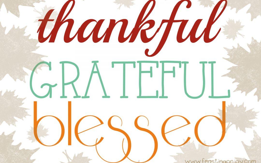 Thankful ~ Grateful ~ Blessed
