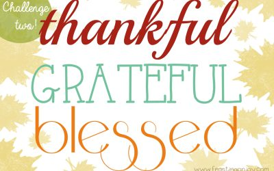 Thankful ~ Grateful ~ Blessed {Challenge Two}