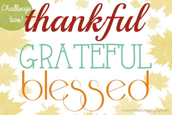 thankful-grateful-blessed-challenge-two