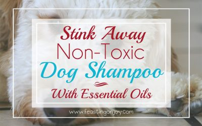 Stink Away: DIY Non-Toxic Dog Shampoo With Essential Oils