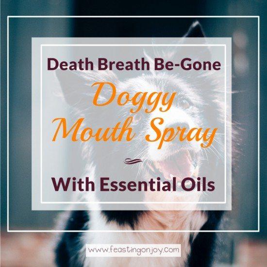 Death Breath Be-Gone Doggy Mouth Spray with Essential Oils 3 | Feasting On Joy
