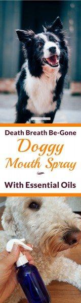 Death Breath Be-Gone Doggy Mouth Spray with Essential Oils 4 | Feasting On Joy