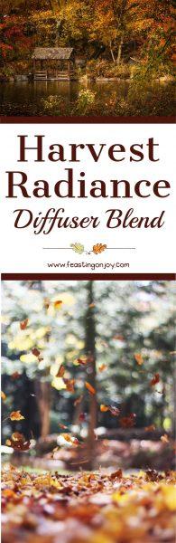 Harvest Radiance Diffuser Blend 1 | Feasting On Joy