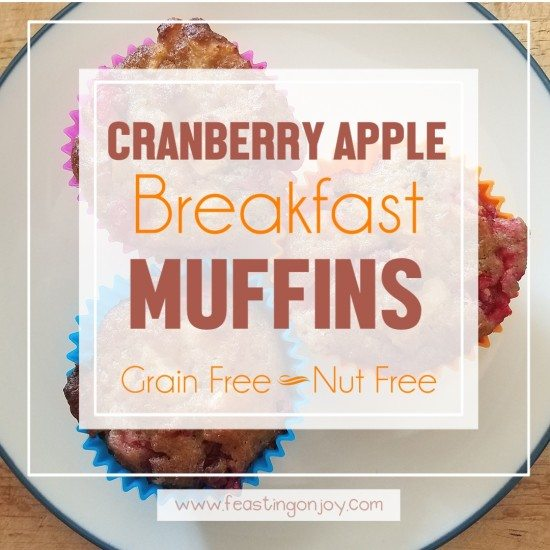 Grain Free, Nut Free Cranberry Apple Breakfast Muffins 5 | Feasting On Joy
