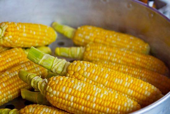 Gluten Cross-Reactivity 101 {The True Facts Behind the Study} 5 | Feasting On Joy
