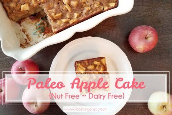 Paleo Apple Cake {Nut Free ~ Dairy Free} 1 | Feasting On Joy