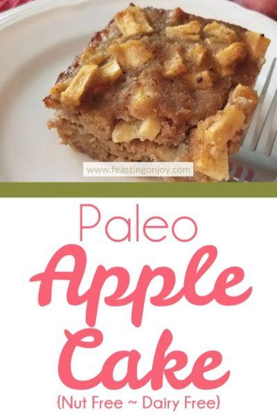 Paleo Apple Cake {Nut Free ~ Dairy Free} | Feasting On Joy