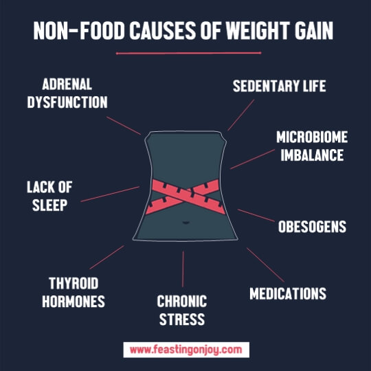 8 Non-Food Causes for Your Weight Gain | Feasting On Joy